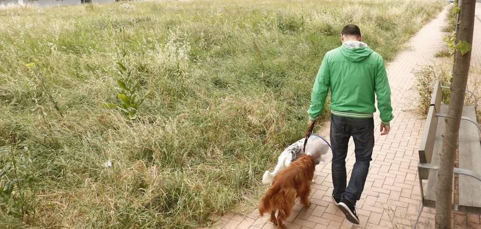 Vitoria estrenará en Zabalgana su primera zona reservada para perros
