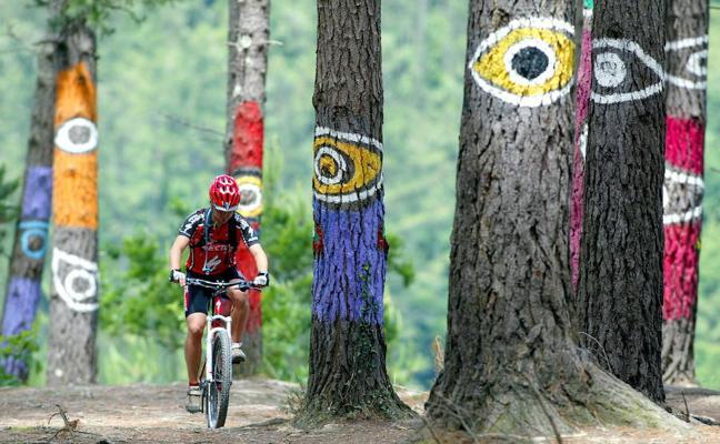 Oma: El bosque te atrapa con su mirada