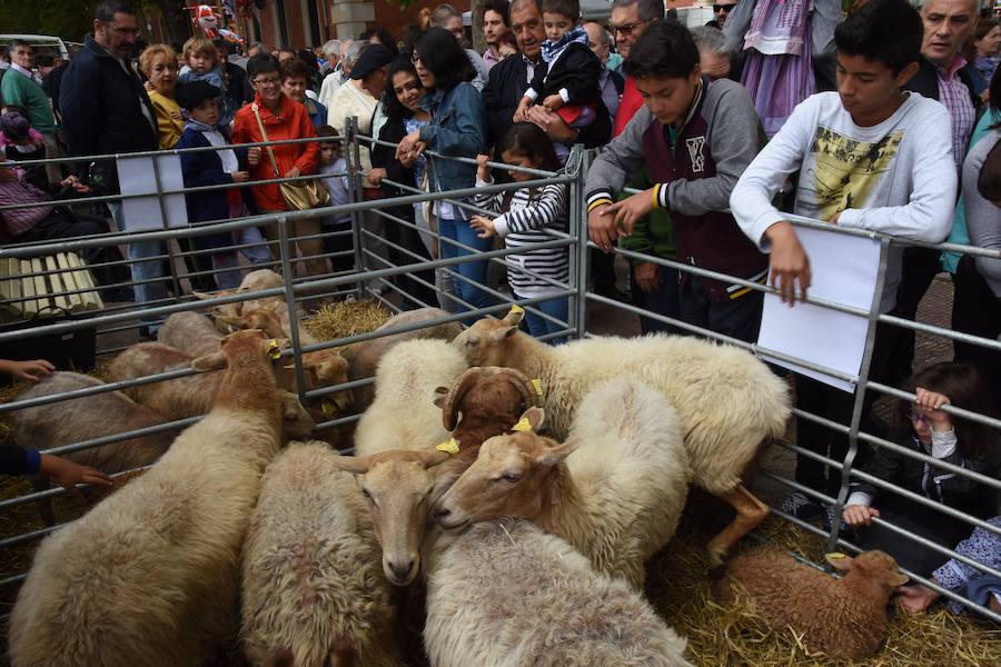 Mercado agrícola del día de Santiago en Vitoria