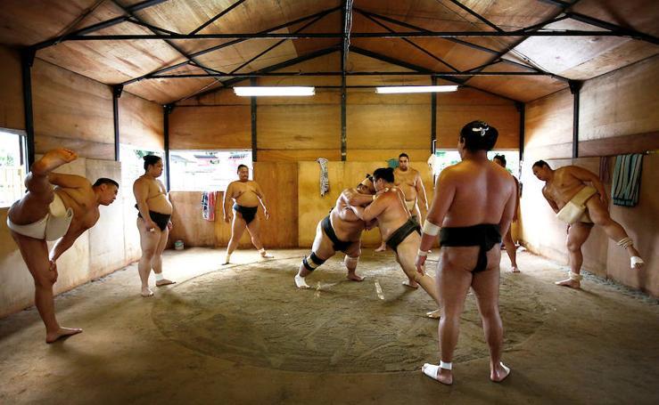 Un día en la vida de un luchador de sumo