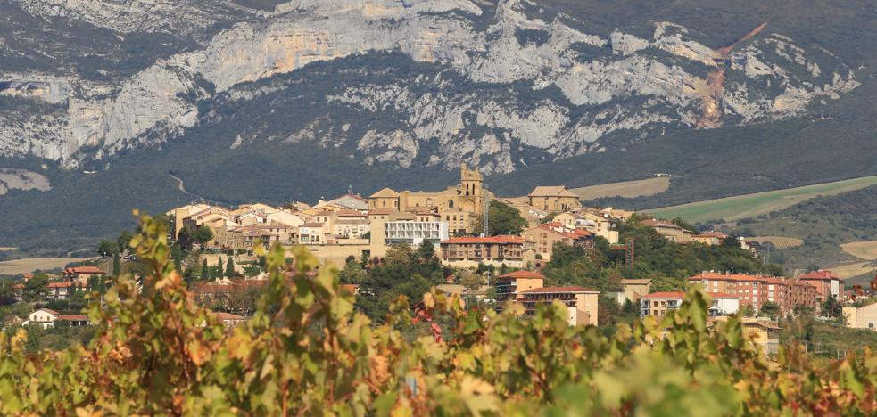 Rioja Alavesa tendrá su diferenciación en la Denominación de Origen