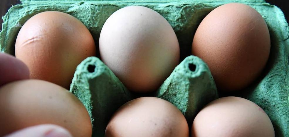 La Comisión Europea convocará una reunión por la crisis de los huevos contaminados