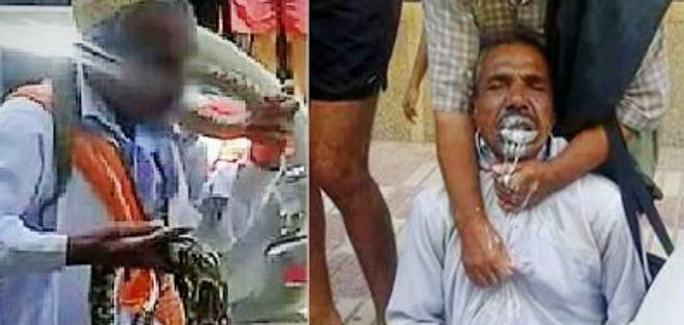 La agónica muerte de un encantador de serpientes tras recibir un beso mortal