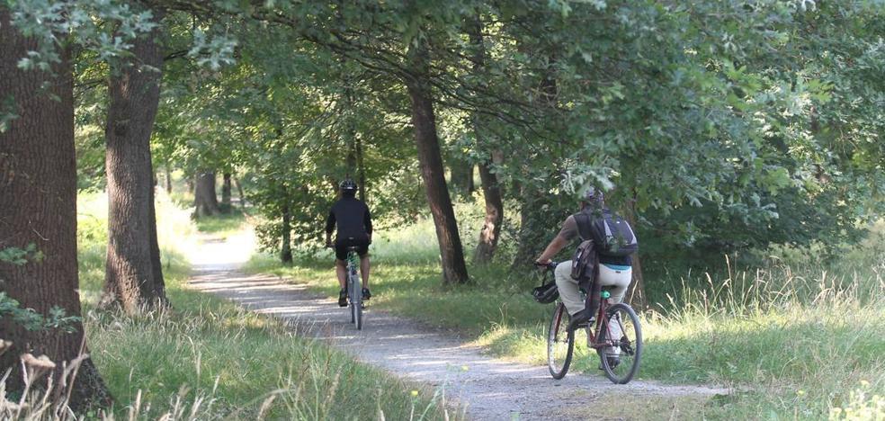 Visita guiada en bicicleta 'por los bosques de Europa' sin salir de Olárizu