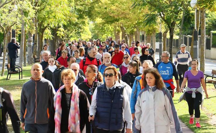 Cerca de dos mil vitorianos disfrutan del bosque de Armentia