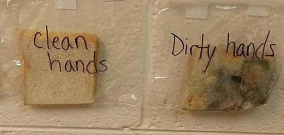 El curioso experimento de una profesora para motivar a los niños a lavarse las manos
