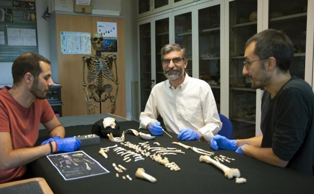 Los crecimientos de un neandertal de siete años y un sapiens son muy similares