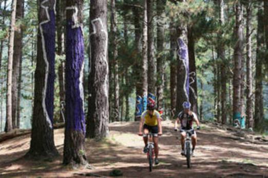 De ruta por los paisajes de la comarca