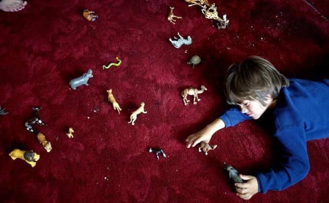 La herencia genética es la principal causa del autismo