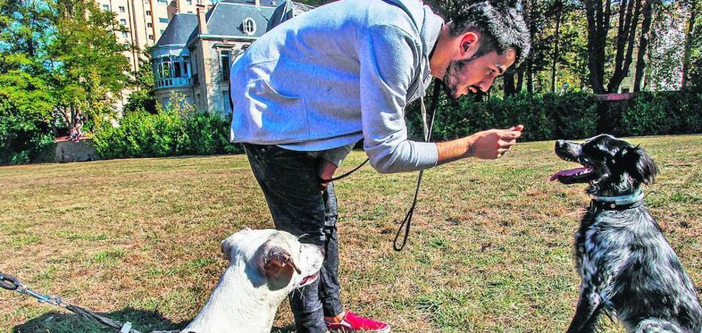 Vitoria ata a sus perros en corto