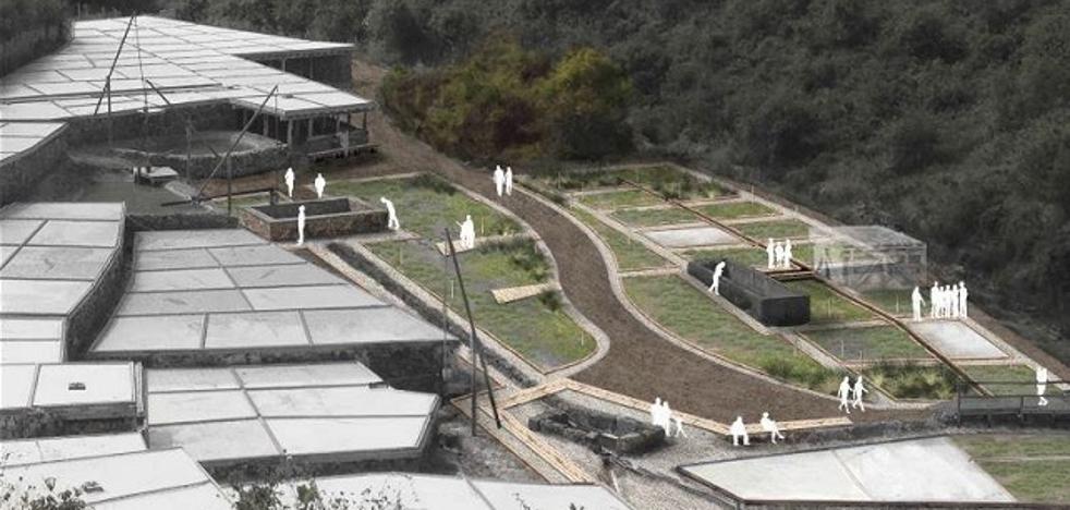 El Valle Salado tendrá en 2018 un jardín botánico de plantas salinas