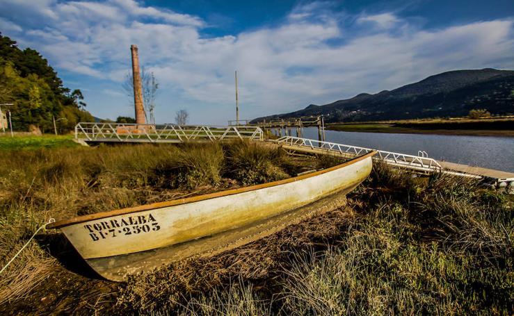 Un paseo por las marismas de Urdaibai