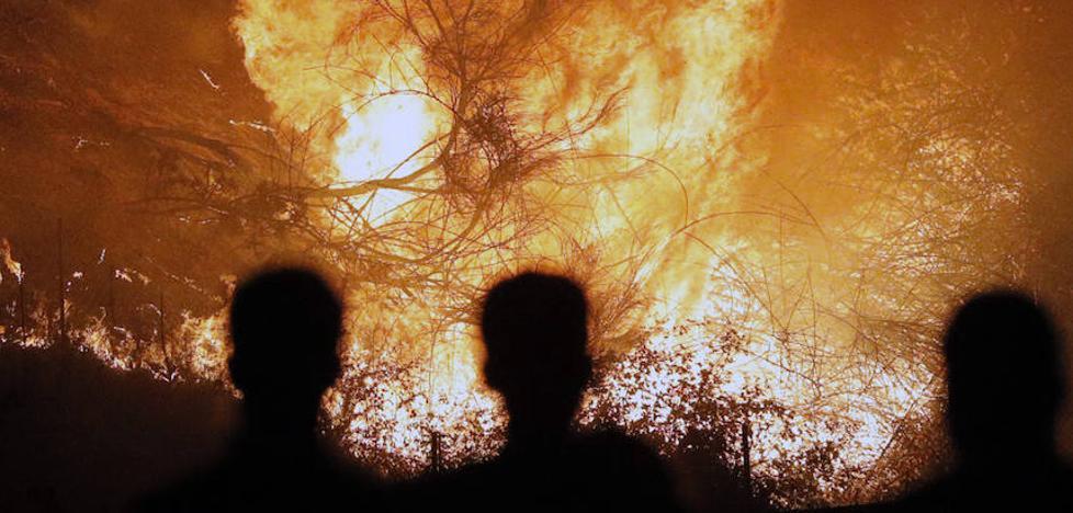 Incendios en Galicia: un brigadista pirómano dice que cobraba entre 50 y 150 euros por cada fuego