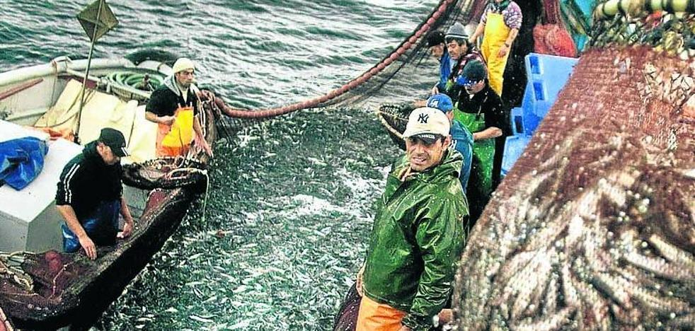Científicos aconsejan prohibir la pesca de la sardina el próximo año por su «escasez»