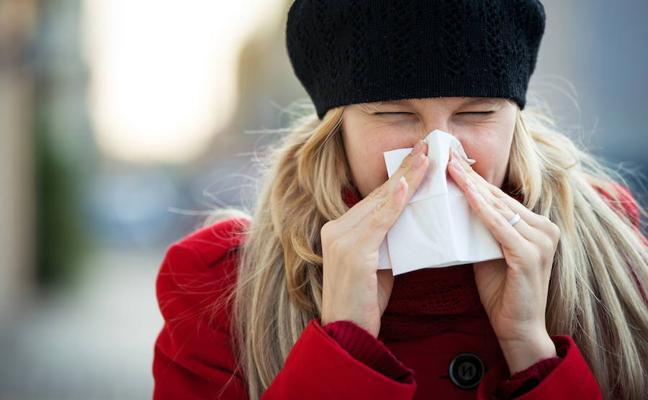Adi ibili, badator gripea