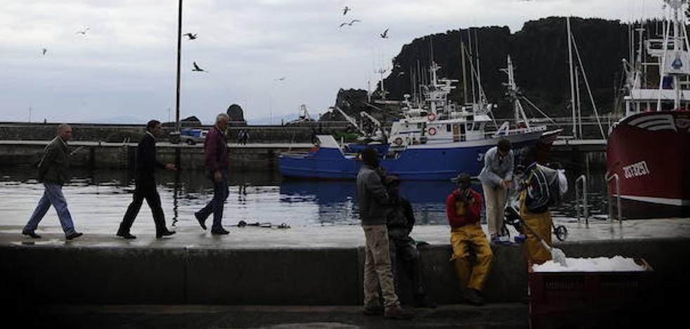 El sector de bajura reclama cuotas por barco y día antes de prohibir la pesca de sardina