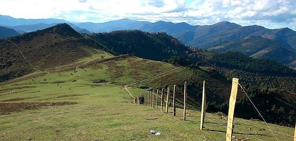 Detienen un nuevo intento de cierre en el monte que une a Zalla y el Valle de Mena