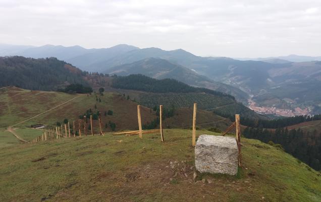 La Diputación retira el vallado de ganaderos burgaleses en el monte de Zalla