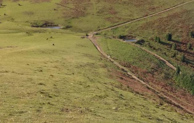 El Valle de Mena se querellará contra Bizkaia por el vallado de Celadilla