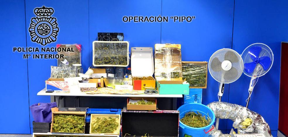 La Policía incauta cerca de 9 kilos de droga en Miranda para distribución inmediata