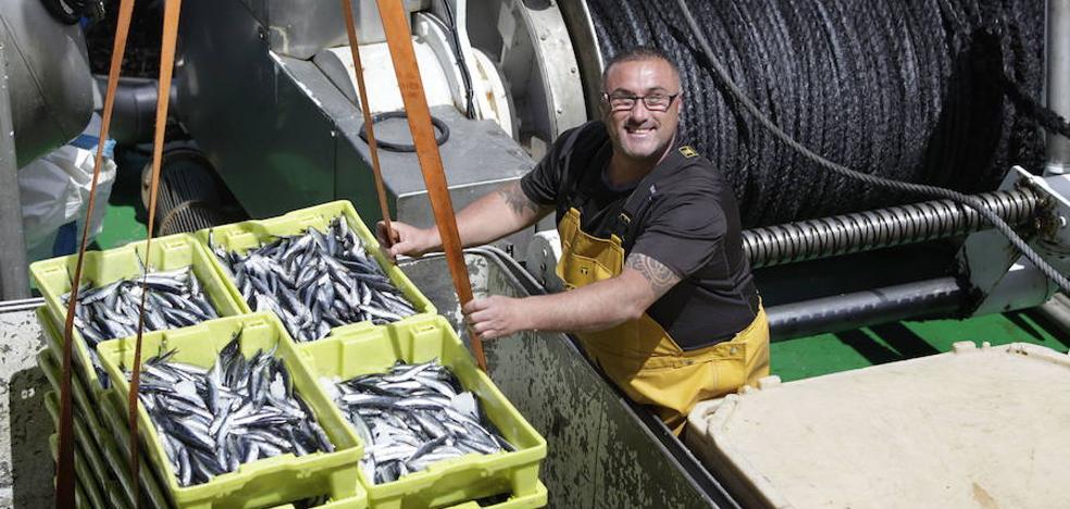 Los bancos de anchoa pequeña alcanzan cotas históricas con 725.000 toneladas
