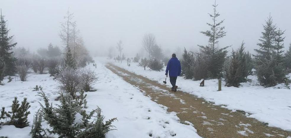 Hasta 14 grados bajo cero para saludar al puente en Álava