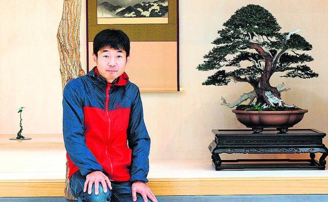 La belleza del arte del bonsai, en el Palacio Europa