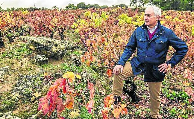 Los primeros 'viñedos singulares' de Rioja Alavesa