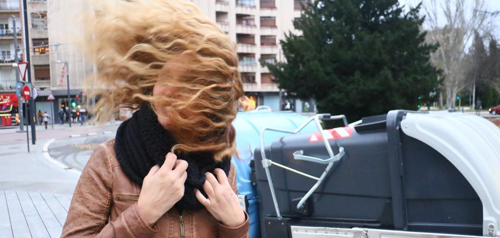 El vendaval derriba árboles y provoca daños en decenas de coches en Vitoria