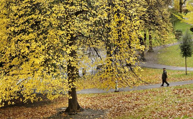 Un otoño muy cálido y muy seco da paso a un invierno con temperaturas superiores a las normales