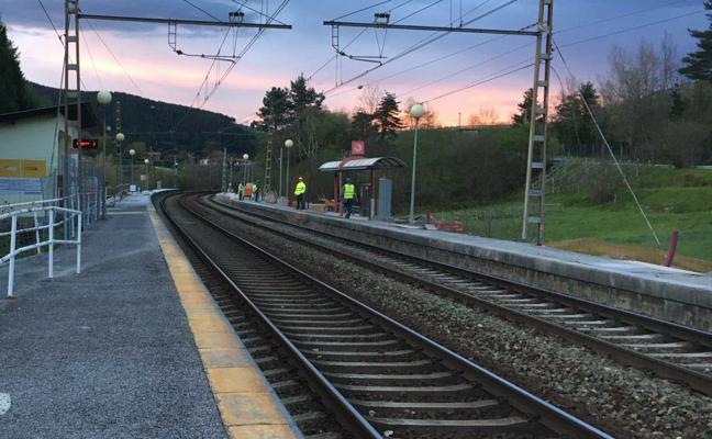 Un tren arrolla a seis vacas en Arrankudiaga