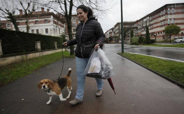 Gernika sanciona a 40 dueños por llevar a sus perros sueltos y no recoger las heces de la calle