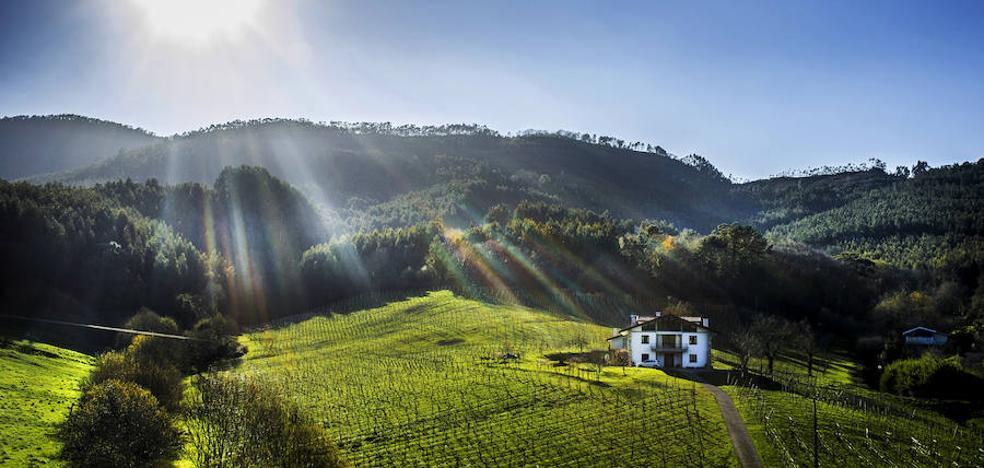 Bakio, paseo entre ermitas y viñedos