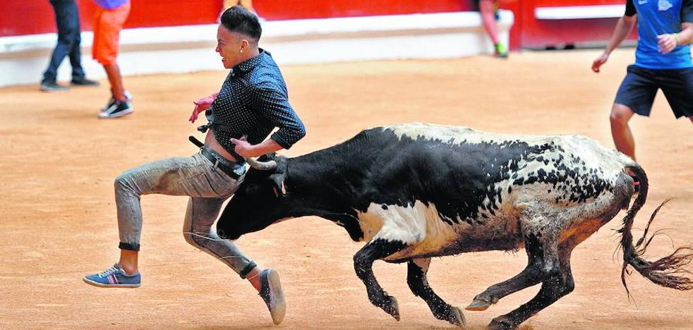 Vitoria sacará a concurso un pliego exclusivo de vaquillas para dar uso al Iradier en La Blanca