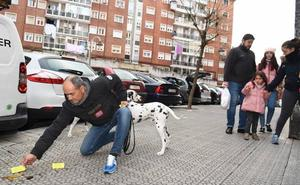 'Cruzada' contra las cacas de perro en Bilbao: «Las marco con tarjetas para avisar, pero lo que hace falta son multas»