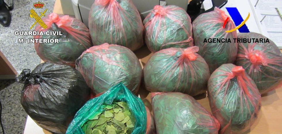 Requisan en 'La Paloma' 90 kilos de hojas de coca en un año