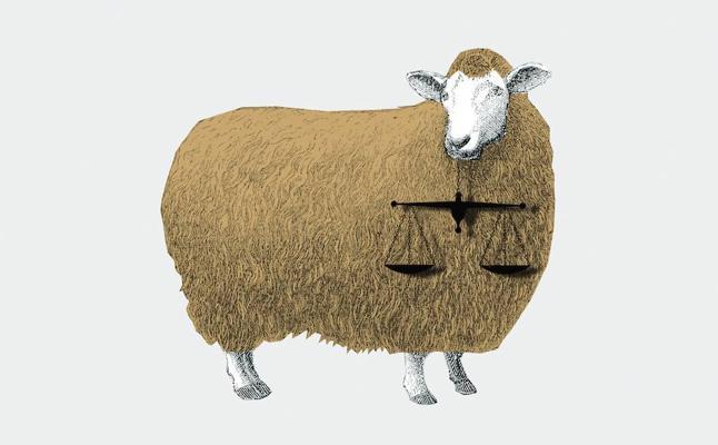 La jueza y la oveja 28