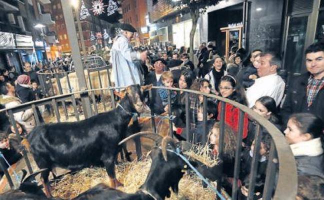 Colectivos conservacionistas piden prohibir eventos con animales en Basauri