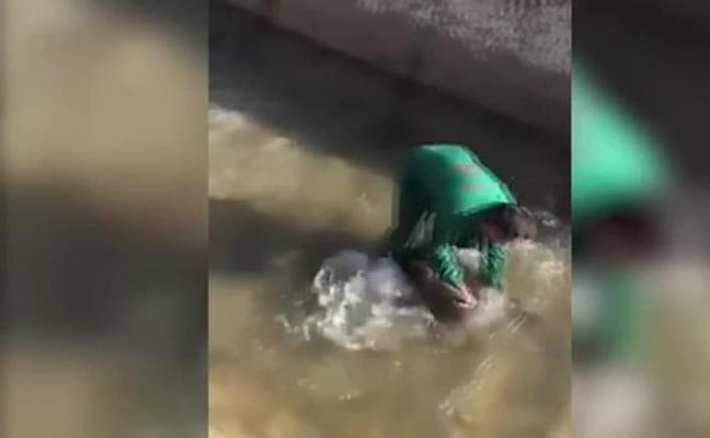 La Policía interroga al maltratador de un jabalí en un vídeo viral