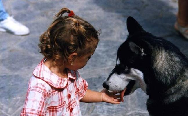 Queda prohibido regalar mascotas a menores de 16 años