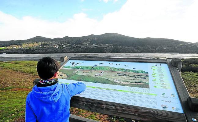 Los humedales, tesoros líquidos de Euskadi