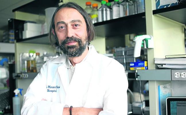 «La vacuna universal contra la gripe puede llegar en diez años»