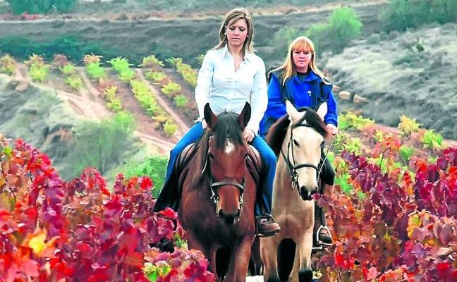 El vino del Camino