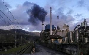 Vecinos de Güeñes reactivan las protestas contra la planta de biomasa de Aranguren