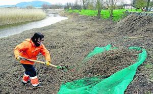 Descartan daños al anidamiento de aves por los trabajos en el Lago de Bayas
