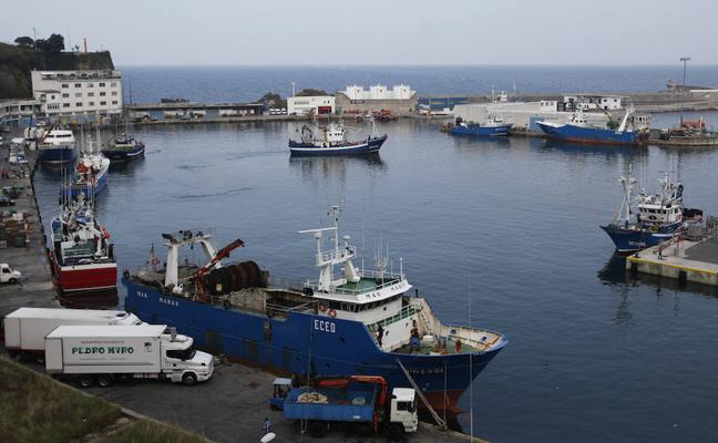 La merluza copa el 75% de las ventas de la flota de altura de Ondarroa