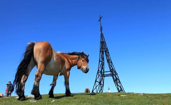 Más de 42.000 visitas a los parques naturales vizcaínos