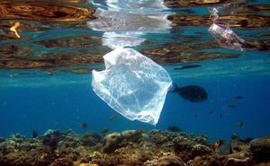 El cobro obligatorio de las bolsas de plástico en el comercio se retrasa