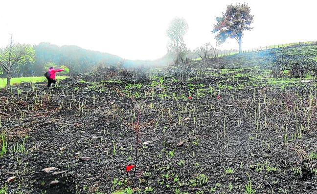 Detienen a un ganadero acusado de provocar dos incendios en Carranza