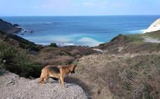 Un corrimiento de tierras destroza el camino de acceso a la playa de Meñakoz